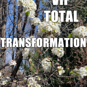 VIP Total Transformation