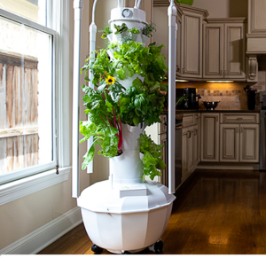 Support Your Healthy Lifestyle with Tower Garden